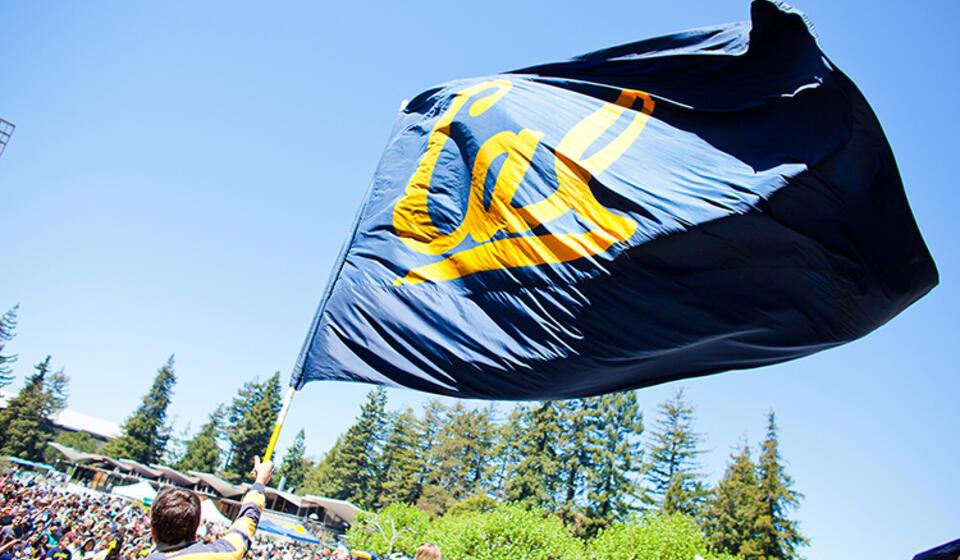UC Berkeley top public university